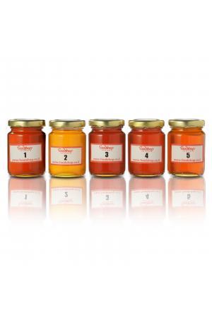 מארז טעימות דבש